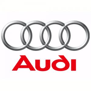 Audi ohišje